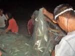 night fishing (3)
