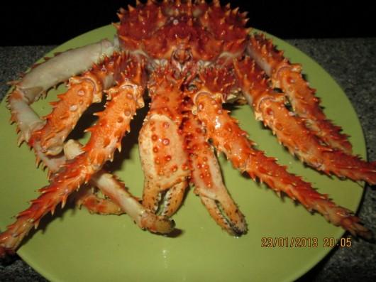 king crab (1)