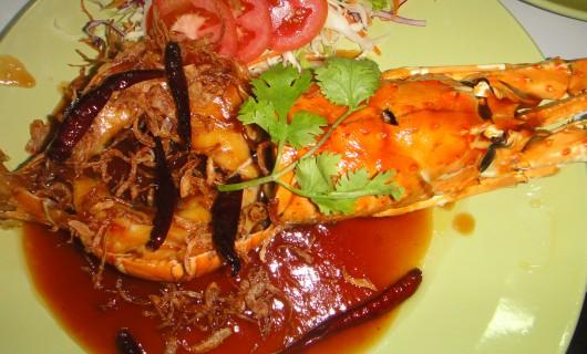lobster (5)