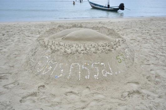 Beach Art (29)