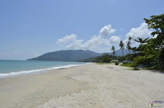 beach (9)