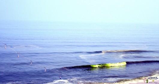 Green Sea4