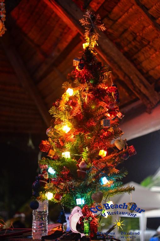 christmas 2014 (14)