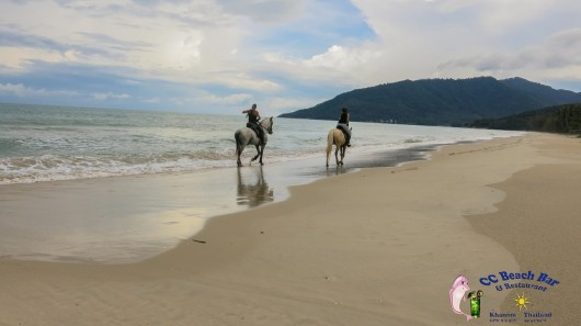 Horse riding on nadan beach (1)