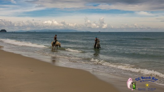 Horse riding on nadan beach (3)