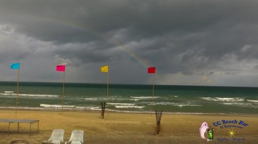 Rainbow (2)-2