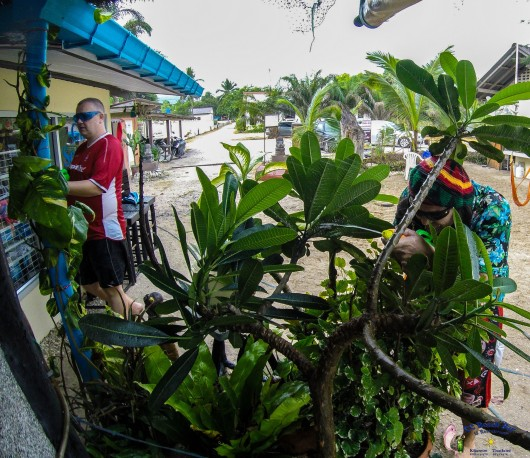 Songkran (10)